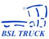 Promocyjne ceny na tuleje i klocki firmy SLP w BSL Truck