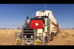 Sprytny kierowca ciężarówki