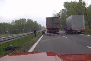 Z motocykla wprost pod koła ciężarówki [Film]