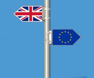 Brexit – przewodnik przewoźnika drogowego