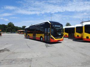 Hybrydowe autobusy Volvo w Grudziądzu