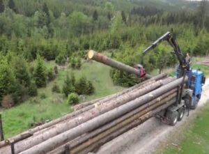 Bardzo długi transport drewna [FILM]